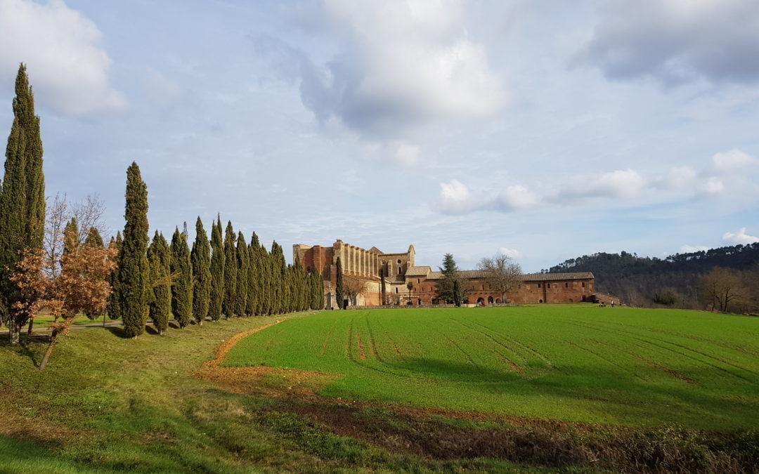 Abbazia di San Galgano e Eremo di Montesiepi