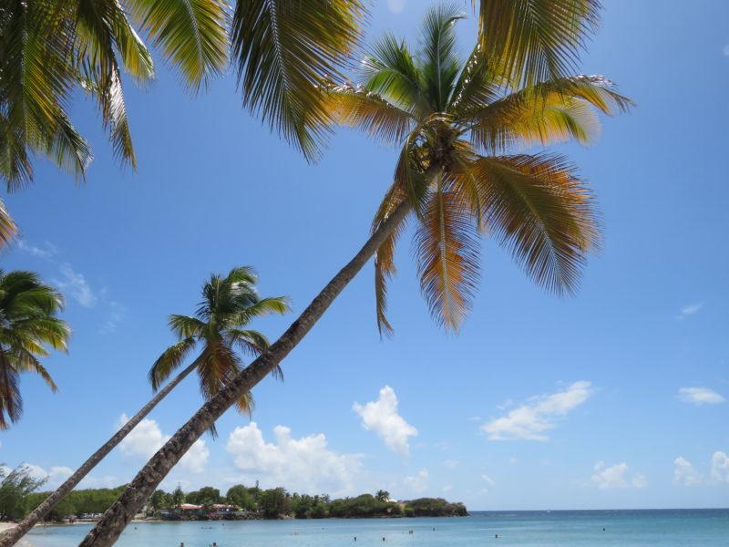 Martinica - Informazioni - Quando andare