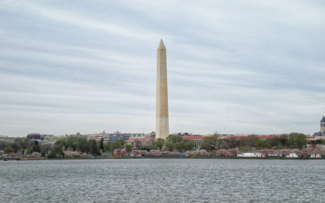 Un giorno a Washington D.C.